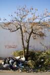 Poubelles dans un quartier de Tunis - Fevrier 2014